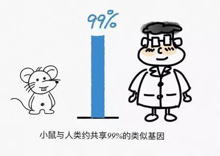 (绘图:任丹丹)