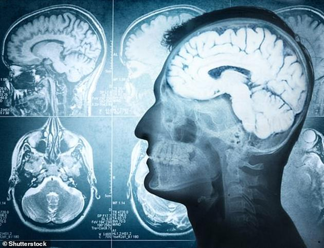 """人类大脑语音识别有""""瓶颈"""":无法同时记录两个人说话 股票配资"""