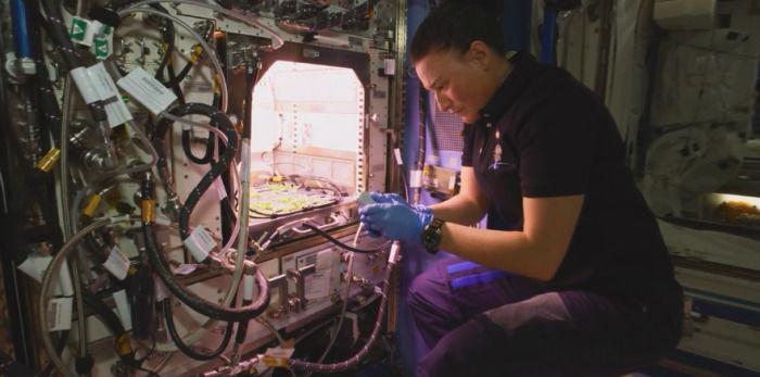 外媒:NASA发布了首个来自太空的8K视频 股票配资